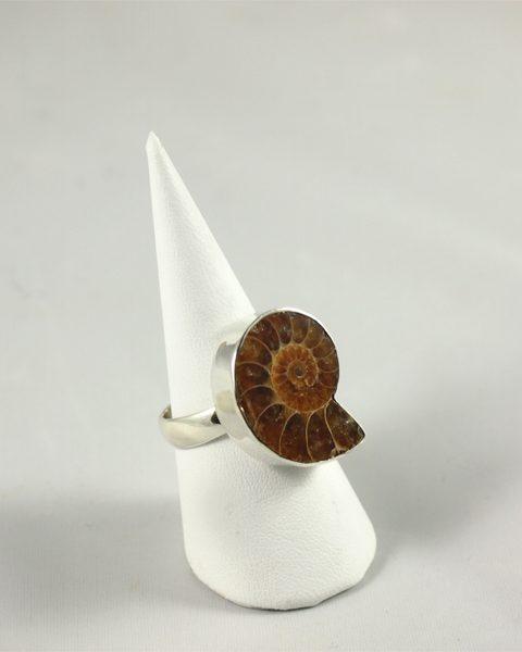 Ammonit Ring Madagaskar bei Singer Wien